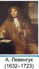 А. ван Левенгук