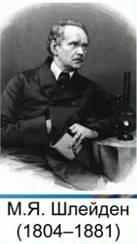 М. Шлейден